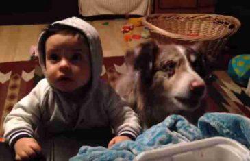 """Žena nagovarala sina da kaže """"mama"""" pa umrla od smijeha kad je pas bio brži od djeteta"""