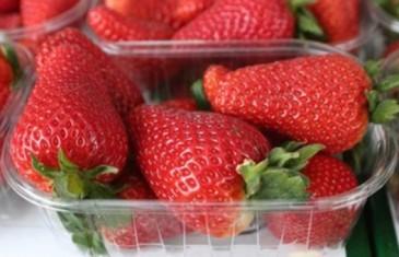 POSLANO UPOZORENJE KUPCIMA: Evo koje jagode NIKAKO ne kupujte…