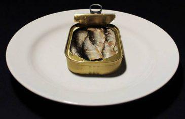 Zašto je potrebno izbjegavati ribu sumnjivog porijekla?