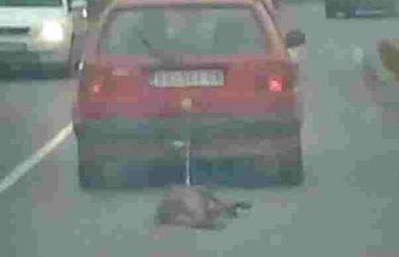 MONSTRUOZNO: Vezao psa za kola i vukao ga putem!