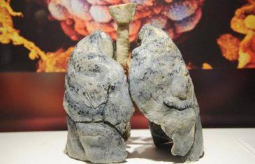 Napitak koji pušačima spašava pluća