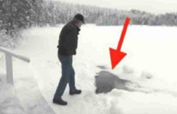 Svakog dana čeka svog prijatelja da izađe iz rupe u jezeru, to je nešto što morate vidjeti