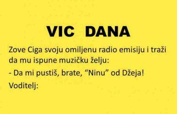 VIC DANA: Nina od Džeja