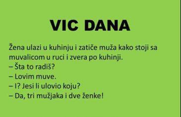 VIC DANA: Muhe