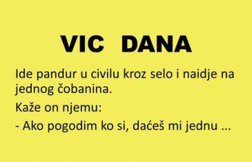 VIC DANA: Pandur i čobanin