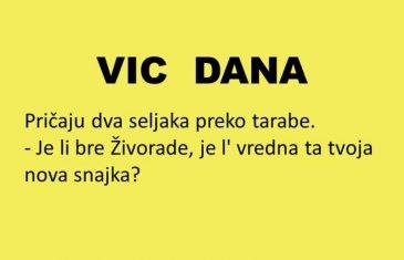 VIC DANA: Vrijedna snajka