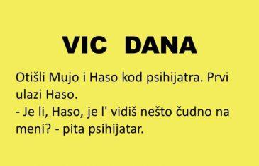 VIC DANA: Mujo i Haso kod psihijatra