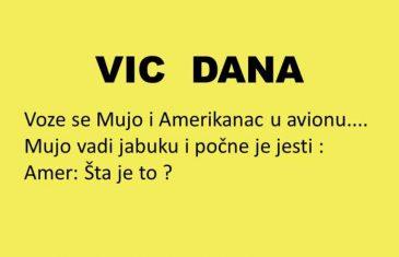 VIC DANA: Mujo i Amerikanac u avionu…