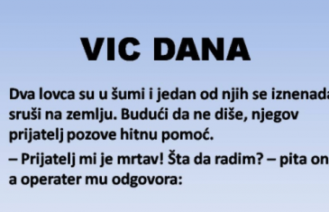 VIC DANA: Dva lovca su u šumi