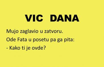 VIC DANA: Mujini jadi