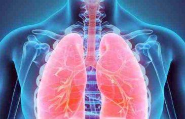 Eliminirajte konačno toksine iz pluća i jetre: Ovo su najjači 'čistači' koje morate konzumirati!