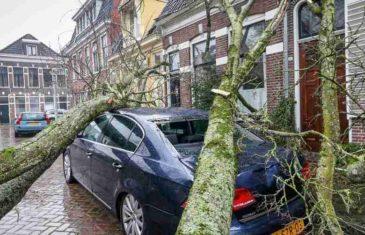 MOĆNA OLUJA SNAŽNO UDARILA DILJEM SJEVERA EUROPE: Vjetar čupa drveće iz korijenja, ulice su poplavljene, letovi se masovno otkazuju