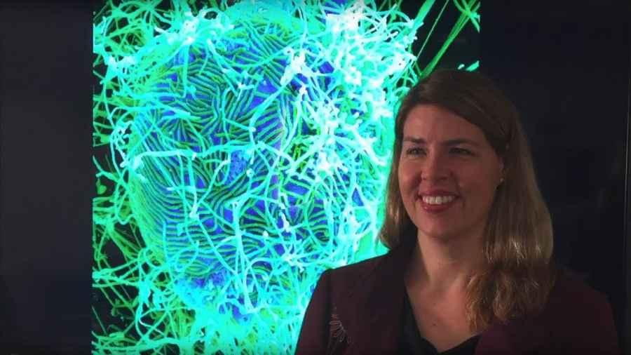 AMERIKANCI OBJAVILI NOVU STUDIJU O KORONI: Loša je vijest da je mutirani virus još zarazniji, dobra je vijest da je…